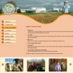 Brookfield Pumpkins Events