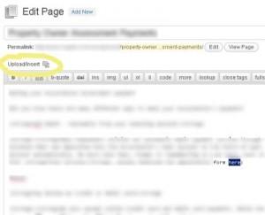 Word Press Edit Page